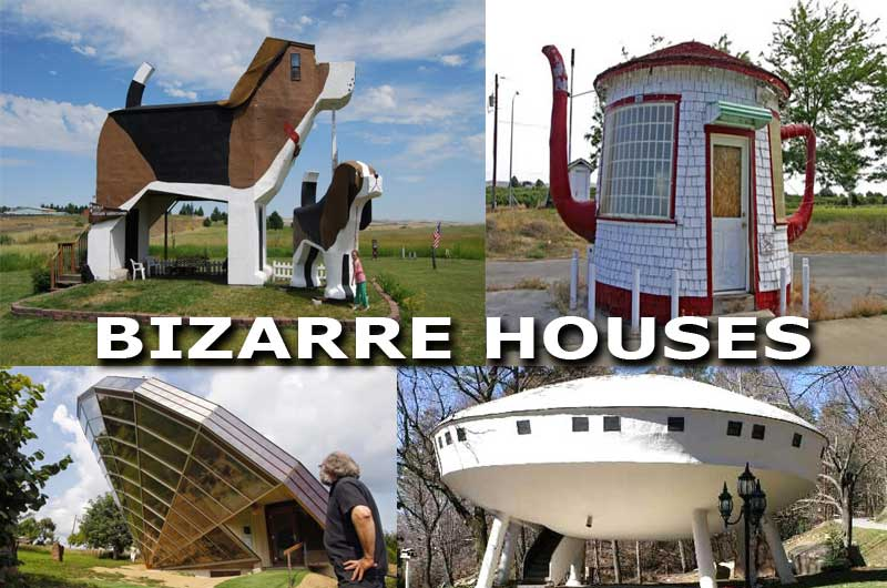 Vedio Top 21 Most Bizarre Crazy And Unusual Houses In